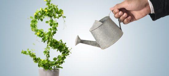 How to make a profitable website